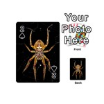 Insect Macro Spider Colombia Playing Cards 54 (Mini)