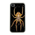 Insect Macro Spider Colombia Apple iPhone 4 Case (Clear)
