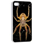 Insect Macro Spider Colombia Apple iPhone 4/4s Seamless Case (White)