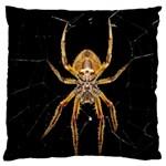 Insect Macro Spider Colombia Large Cushion Case (Two Sides)