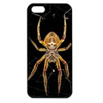 Insect Macro Spider Colombia Apple iPhone 5 Seamless Case (Black)