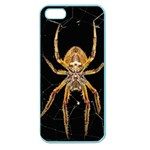 Insect Macro Spider Colombia Apple Seamless iPhone 5 Case (Color)