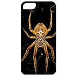 Insect Macro Spider Colombia Apple iPhone 5 Classic Hardshell Case
