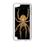 Insect Macro Spider Colombia Apple iPod Touch 5 Case (White)