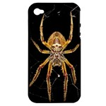 Insect Macro Spider Colombia Apple iPhone 4/4S Hardshell Case (PC+Silicone)