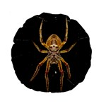 Insect Macro Spider Colombia Standard 15  Premium Round Cushions