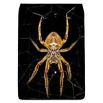 Insect Macro Spider Colombia Flap Covers (L)