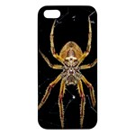 Insect Macro Spider Colombia iPhone 5S/ SE Premium Hardshell Case