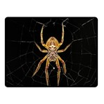 Insect Macro Spider Colombia Double Sided Fleece Blanket (Small)