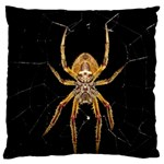 Insect Macro Spider Colombia Large Flano Cushion Case (One Side)