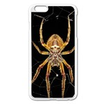 Insect Macro Spider Colombia Apple iPhone 6 Plus/6S Plus Enamel White Case