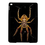 Insect Macro Spider Colombia iPad Air 2 Hardshell Cases