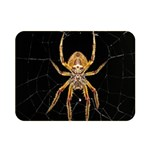 Insect Macro Spider Colombia Double Sided Flano Blanket (Mini)