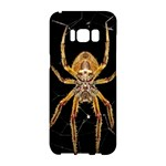 Insect Macro Spider Colombia Samsung Galaxy S8 Hardshell Case