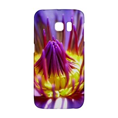 Flower Blossom Bloom Nature Galaxy S6 Edge by BangZart