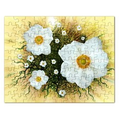 Summer Anemone Sylvestris Rectangular Jigsaw Puzzl by Nexatart