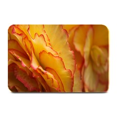 Flowers Leaves Leaf Floral Summer Plate Mats by Nexatart