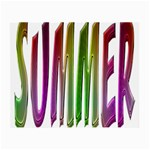 Summer Colorful Rainbow Typography Small Glasses Cloth (2-Side)