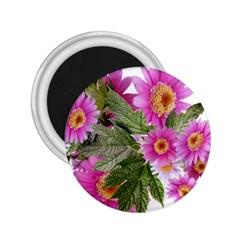 Daisies Flowers Arrangement Summer 2 25  Magnets by Sapixe