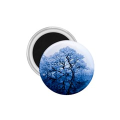 Nature Inspiration Trees Blue 1 75  Magnets by Nexatart