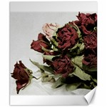 Roses 1802790 960 720 Canvas 8  x 10