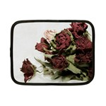 Roses 1802790 960 720 Netbook Case (Small)