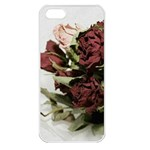 Roses 1802790 960 720 Apple iPhone 5 Seamless Case (White)