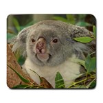 Koala Bear Large Mousepad