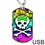 Rainbow Skull Dog Tag USB Flash (One Side)