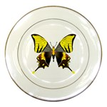 Butterfly M2 Porcelain Plate