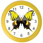 Butterfly M2 Color Wall Clock
