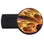 Forgotten Caverns of Dust Fantasy Fractal USB Flash Drive Round (1 GB)