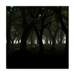 Gothic Dark Forest at Dusk Tile Coaster