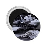 Dark Gothic Winter River of Ice 2.25  Magnet