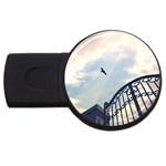 Lonely Crow at Palace Gate Scenic Sky USB Flash Drive Round (2 GB)