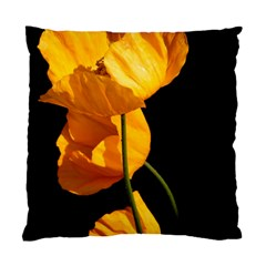 Yellow Poppies Standard Cushion Case (one Side)