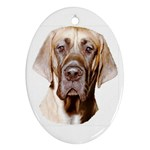 Great Dane ^ Ornament (Oval)
