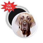 Great Dane ^ 2.25  Magnet (100 pack)