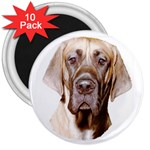 Great Dane ^ 3  Magnet (10 pack)