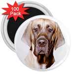 Great Dane ^ 3  Magnet (100 pack)