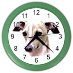 Italian Greyhound ^ Color Wall Clock