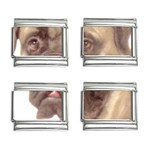 Bull Mastiff ^ 9mm Italian Charm (4 pack)