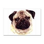 Pug ^ Sticker A4 (10 pack)