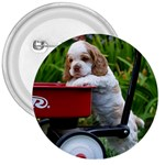 Cocker Spaniel ^ 3  Button