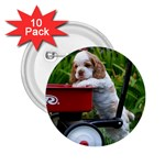 Cocker Spaniel ^ 2.25  Button (10 pack)