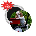 Cocker Spaniel ^ 2.25  Magnet (100 pack)