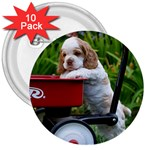 Cocker Spaniel ^ 3  Button (10 pack)