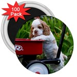 Cocker Spaniel ^ 3  Magnet (100 pack)
