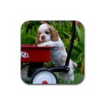 Cocker Spaniel ^ Rubber Square Coaster (4 pack)