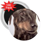 Dobermann Pinscher ^ 3  Magnet (100 pack)